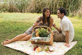 Romantic picnic basket ideas